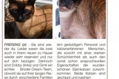 Forum-20200205-Wer-will-Gimli-und-Dobby